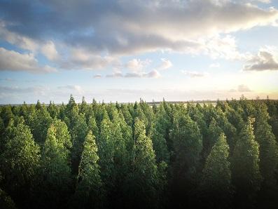 O Plano de Gestão de Qualidade Ambiental é essencial para áreas agrícolas ou industriais.